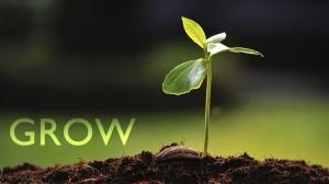grow (1024x576)